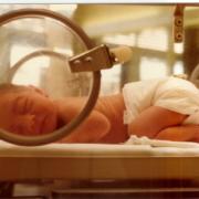 premature-baby-in-incubation-crib